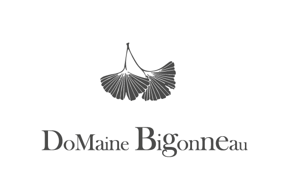 domaine_bigonneau_logo