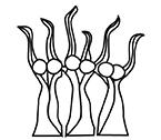 domaine_tatin_logo